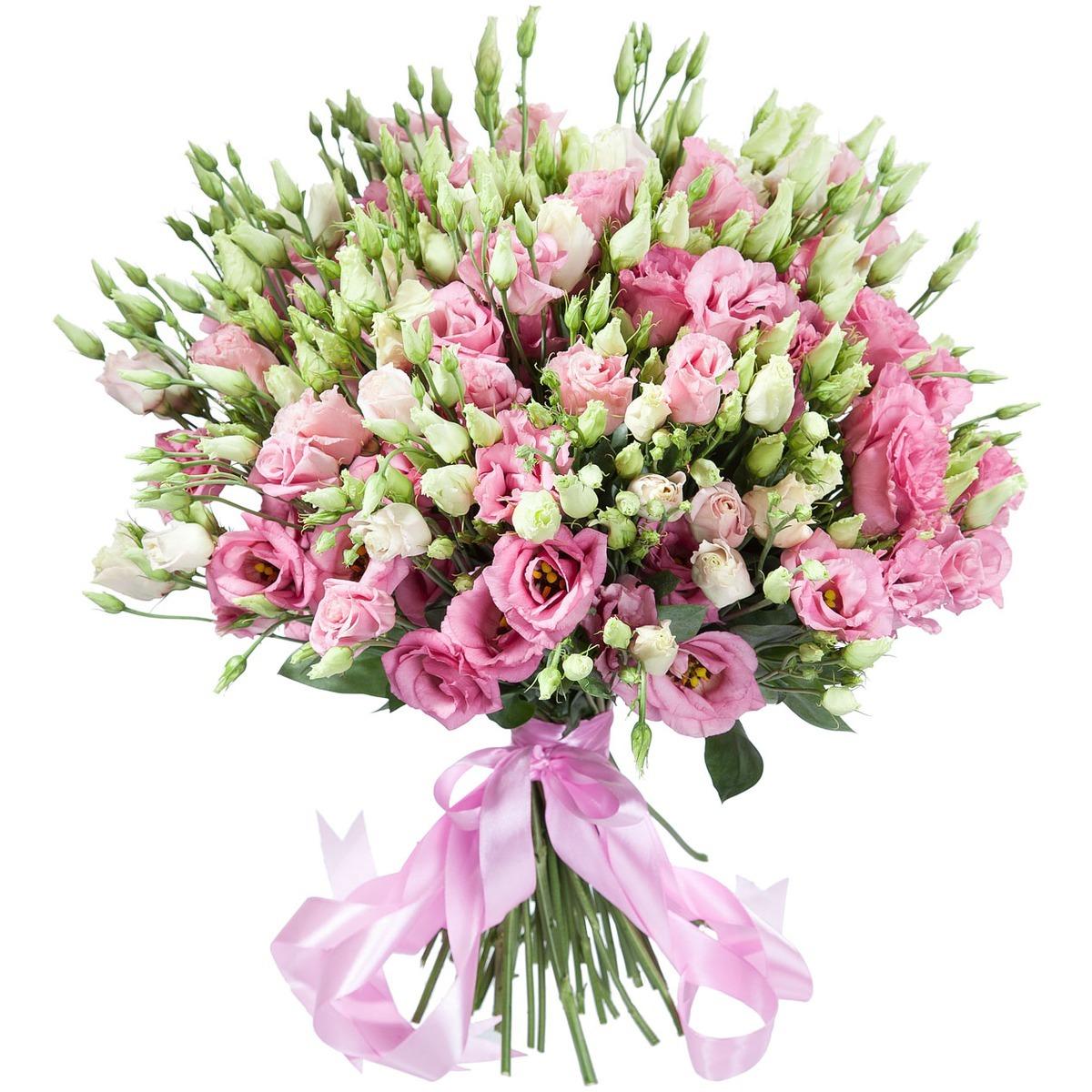 Цветы купить со скидкой купить наклейки на цветы в уфе